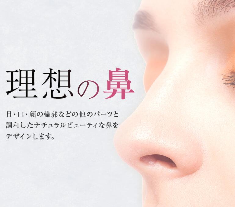 理想の鼻 目・口・顔の輪郭などの他のパーツと調和したナチュラルビューティな鼻をデザインします。